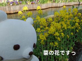 Haru3_2